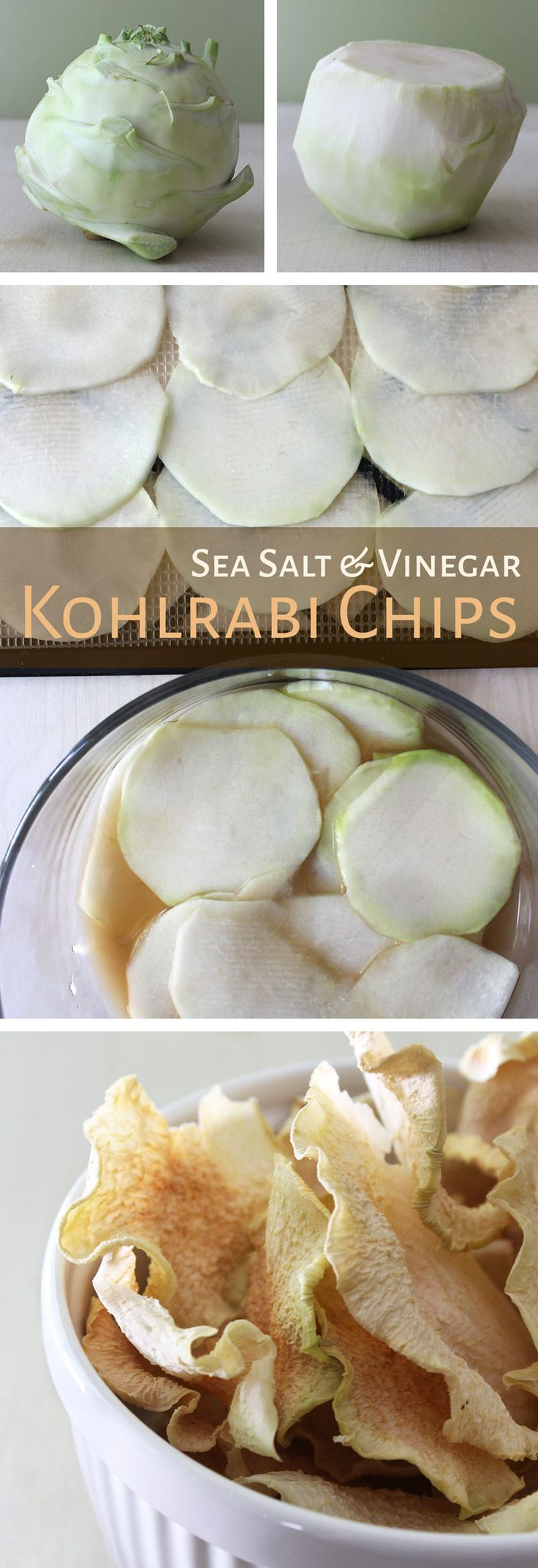 Dehydrated Sea Salt & Vinegar Chips - yum trying these tonight with a bunch of kohlrabi from my garden!