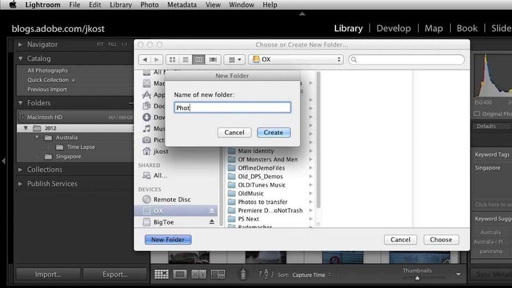 Lightroom 5: Organizing Your Images