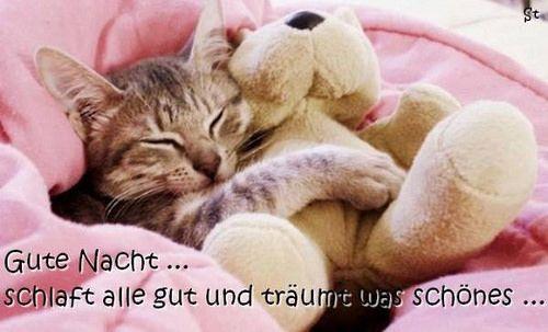 ich wünsche euch noch einen schönen abend und später eine gute nacht - http://www.1pic4u.com/1pic4u/guten-abend-bilder/ich-wuensche-euch-noch-einen-schoenen-abend-und-spaeter-eine-gute-nacht-3/