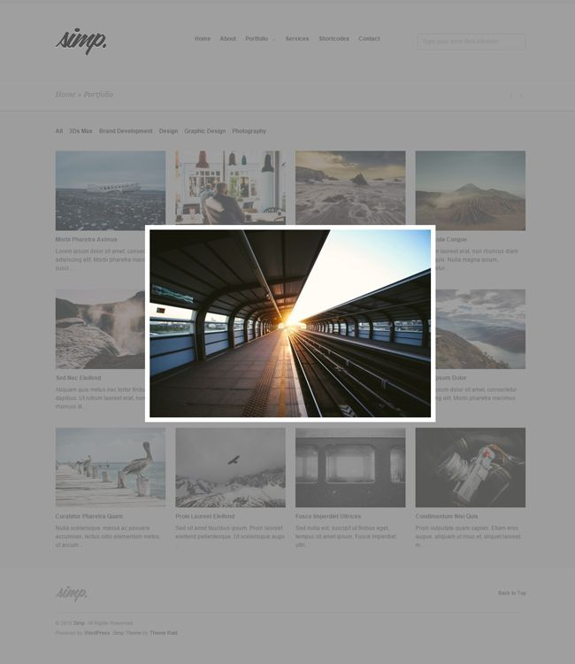 Website: Simp Agency Wordpress Theme (HTML5, CSS3, JS)