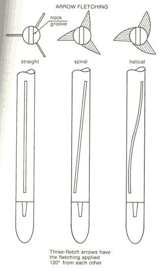 Arrow fletching.