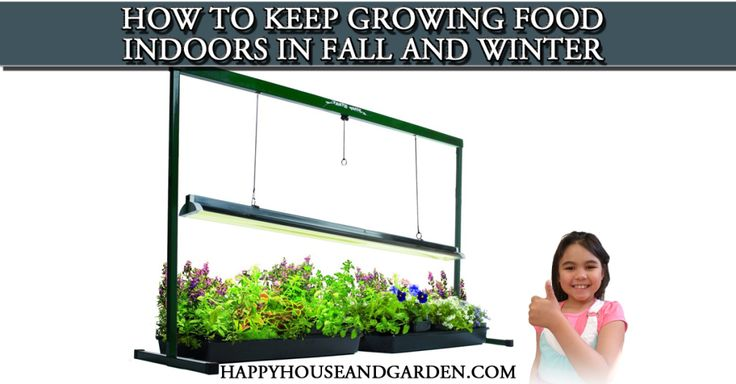 """How to Keep Growing Food Indoors in Fall and Winter.   """"This is the exact same system I grew Tomatoes and herbs under before,,works great"""". Marty Ware - from Marty's Garden on YouTube!"""