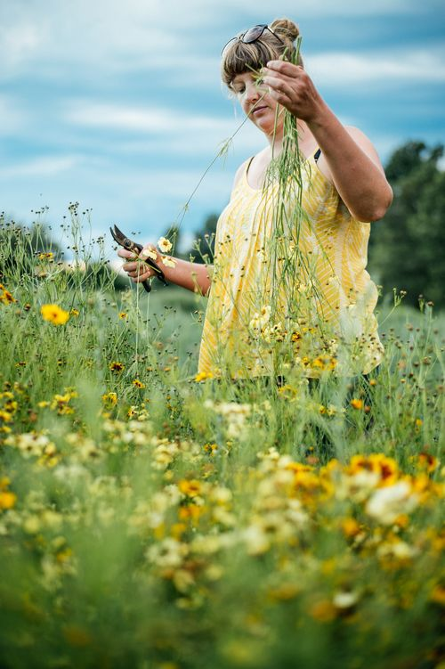 Prince Edward county, Ontario flower farmer Sas of Floralora flowers grows amazing things! Phot0: Johnny C Y Lam ©