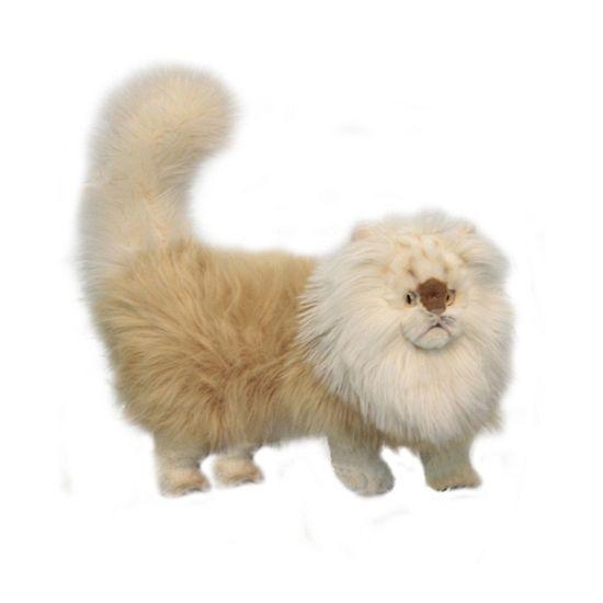 Pluche perzische kat beige 45 cm. Levensechte Perzische katten knuffel van prachtige kwaliteit pluche. Deze staande Perzische kat heeft een mooie beige kleur en is ongeveer 45 cm groot.