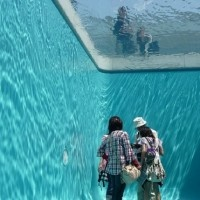 Fake Swimming Pool – for whatever reason I think it'd be cool to have one