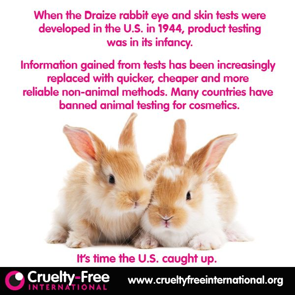 animal testing in cosmetic industry and 29, 2018- 2018: the year to end the sale of animal-tested cosmetics in  in  countries where the ban has been enacted, the cosmetic industry.