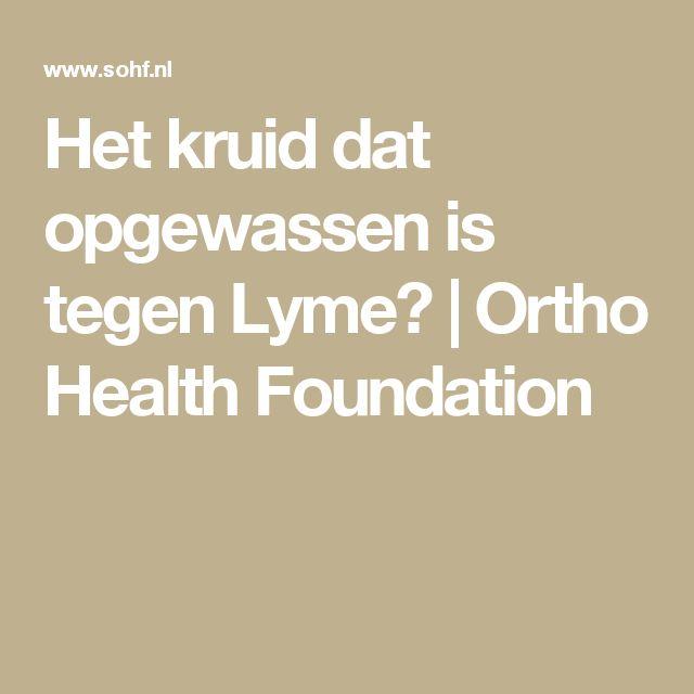 Het kruid dat opgewassen is tegen Lyme? | Ortho Health Foundation