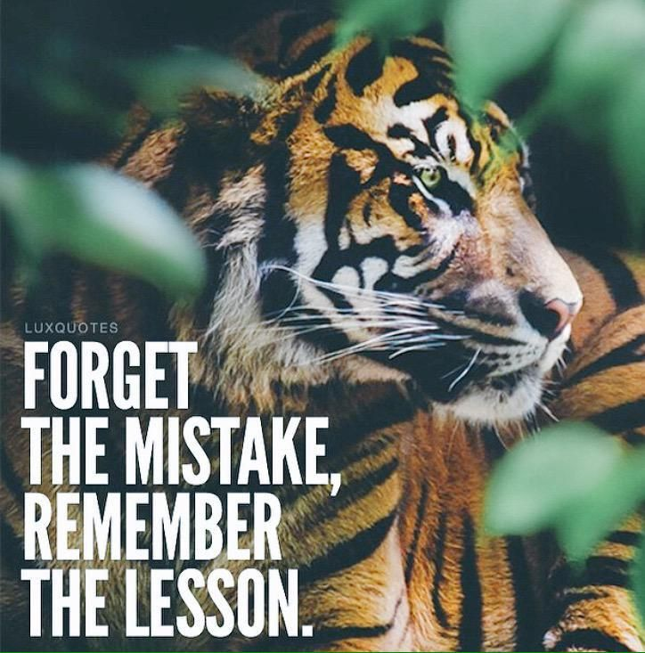 """""""Forget the mistake, remember the lesson."""""""