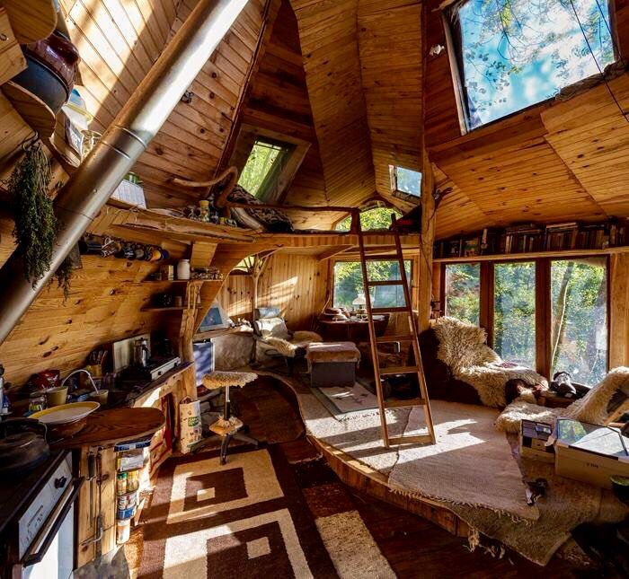 wonderful tree house interior