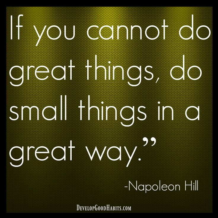 Small Great Things Quote: If You Cannot Do Great Things, Do