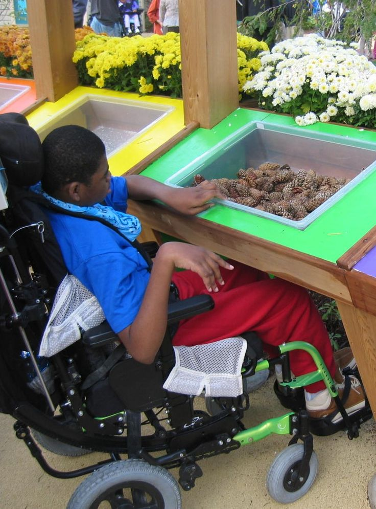 Sensory garden with easy to reach sensory sections - enabling easy access for young people with mobility issues.