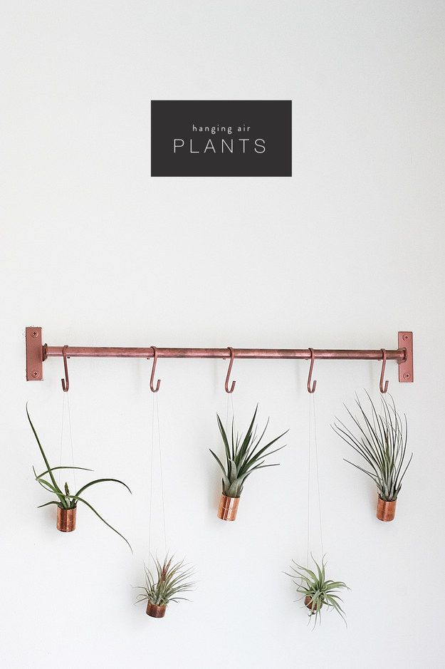 Spray paint a plastic or wooden dowel with copper spray paint, then hang air plants on it. | 33 Gorgeous DIY Projects To Decorate Your Grown Up Apartment