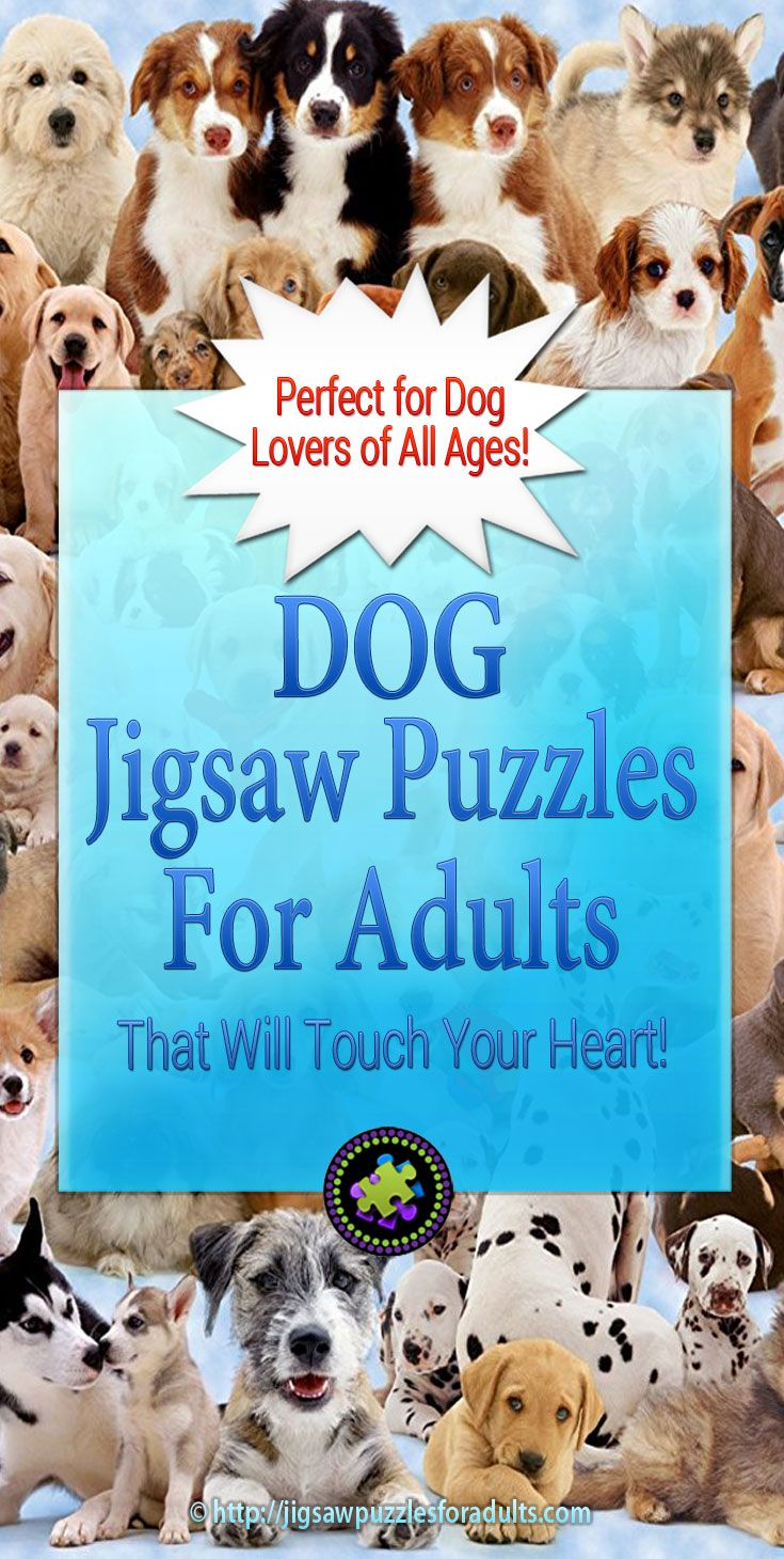 If you're a dog lover or know of someone who is these Dog Jigsaw puzzles for adults are challenging as well as being really enjoyable to work on. Piecing together a dog jigsaw puzzle is a superb way to bring the whole family together to work on a fun project.