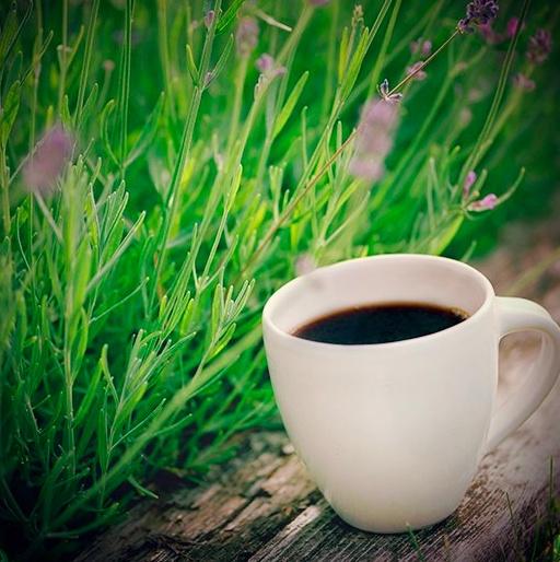 Café printanier !
