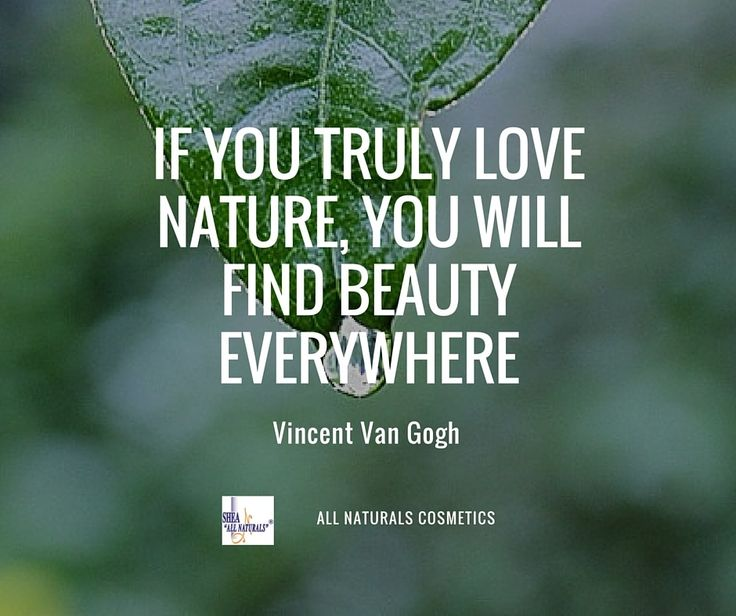 If You Truly Love Nature Will Find Beauty Everywhere Vincent Van