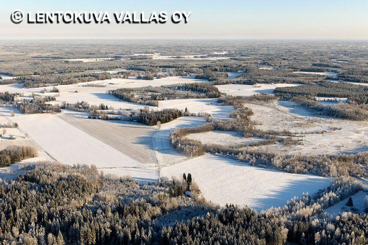 Talvinen peltomaisema, Lempäälä Ilmakuva: Lentokuva Vallas Oy