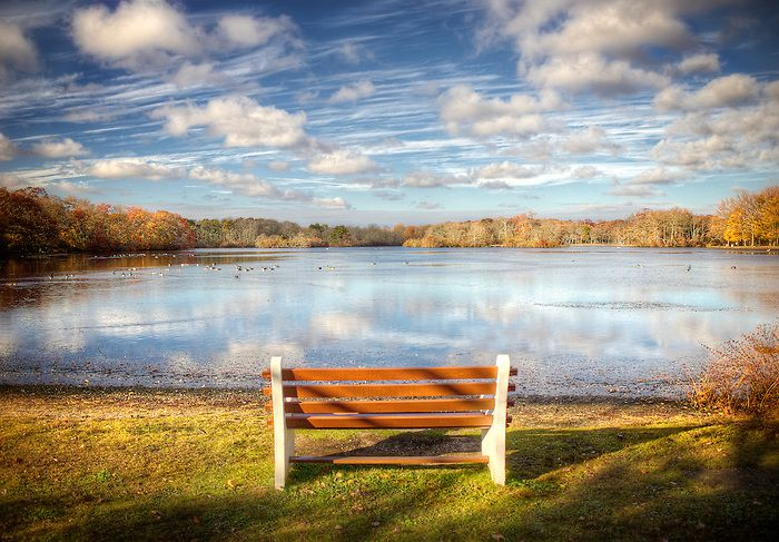 Belmont Lake Bench In November Babylon And Beyond Photography Lake Belmont Babylon
