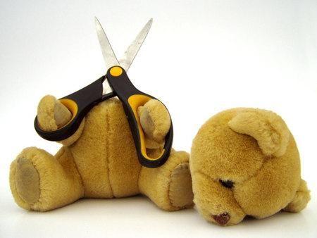 Afbeeldingsresultaat voor teddy bear murdered
