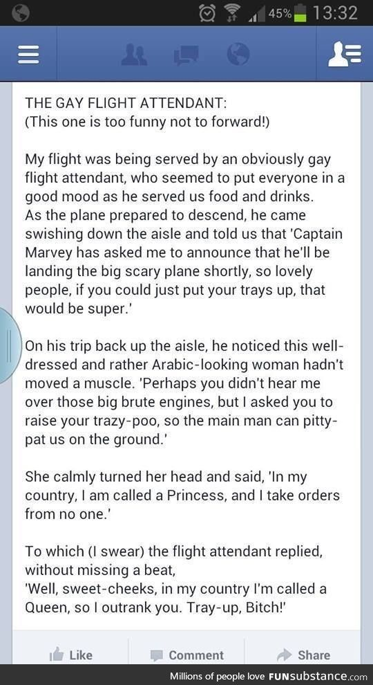 Gay Flight Attendants are the best