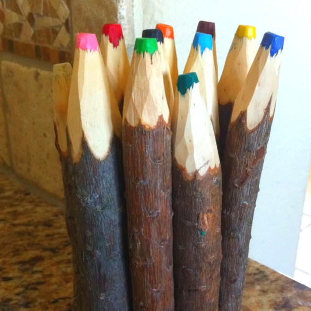 Crayons Made Out Of Tree Branches Products I Love