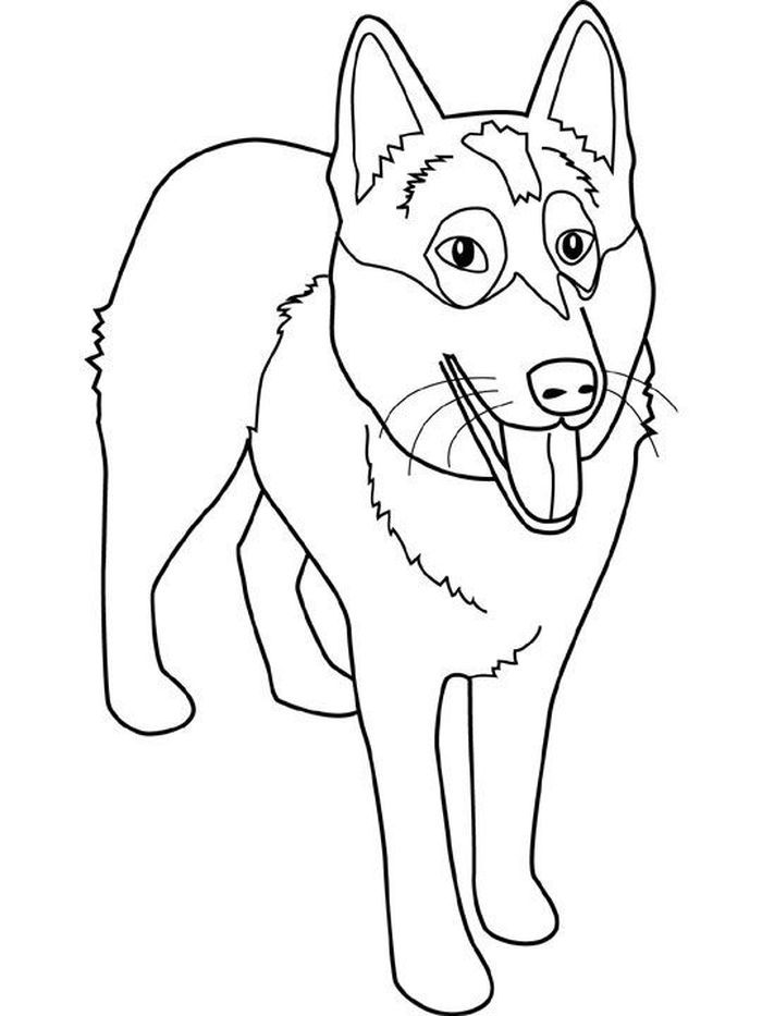 Husky Coloring Pages In 2020 Puppy Coloring Pages Animal Coloring Pages Cute Husky Puppies