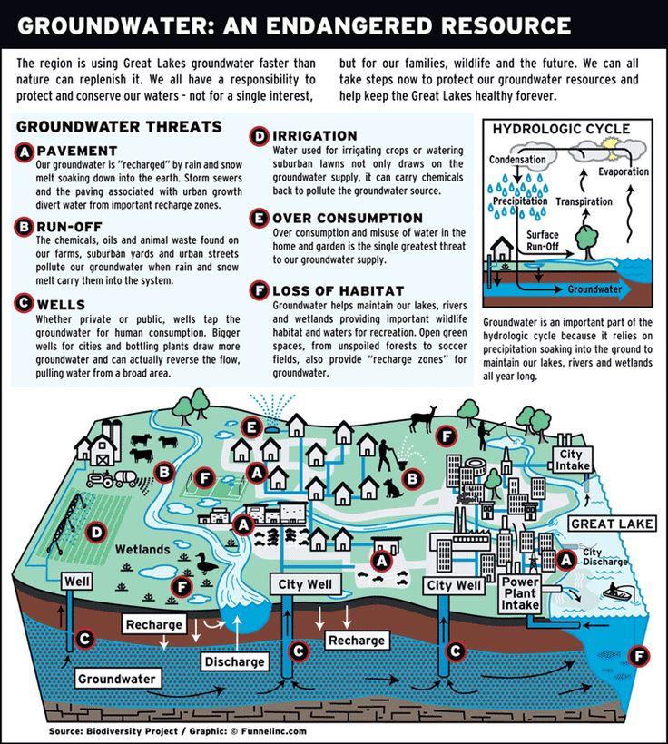 bio diversity  infographic   found on graphs net