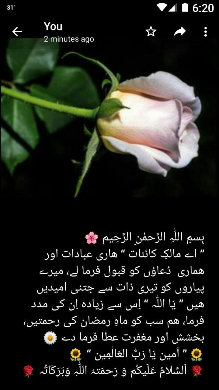 Pin by MIAN ZUBAIR ZIA on DUAIN   Dua in urdu, Morning