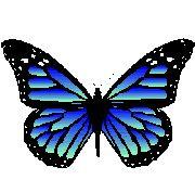 Imagenes de mariposas animadas ~ Vida Blogger