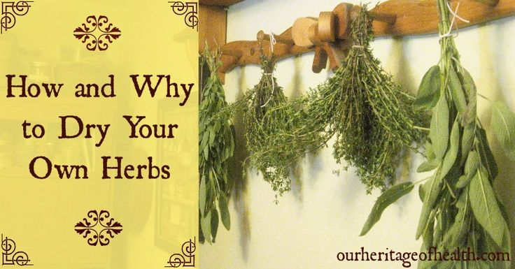 Why and how to dry y our own herbs | Our Heritage of Health