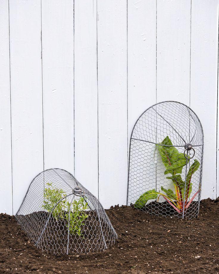 The 56 best Garden Enclosure images on Pinterest | Vegetable garden ...