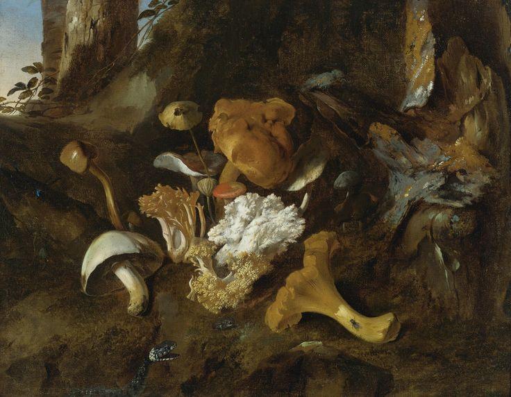 ✨ Otto Marseus van Schrieck, Dutch (1619/20 (?)-1678) - FOREST FLOOR STILL LIFE WITH MUSHROOMS, BUTTERFLIES AND A SNAKE