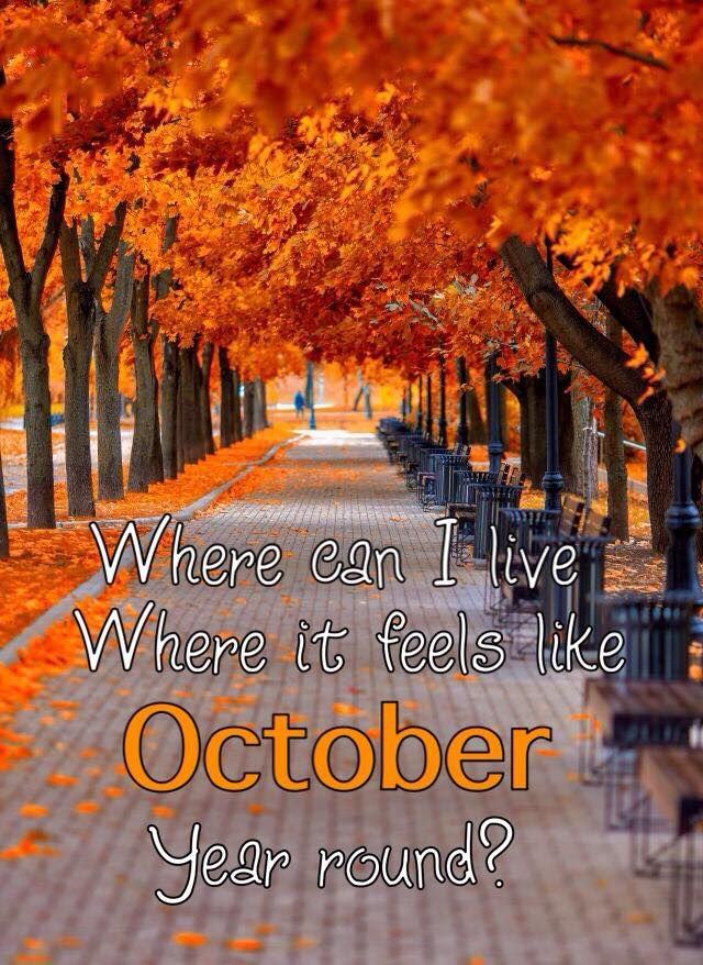 This is soooo ME! I've always said I'd love to find a place that's Fall all year round. I'd move there in a heartbeat!