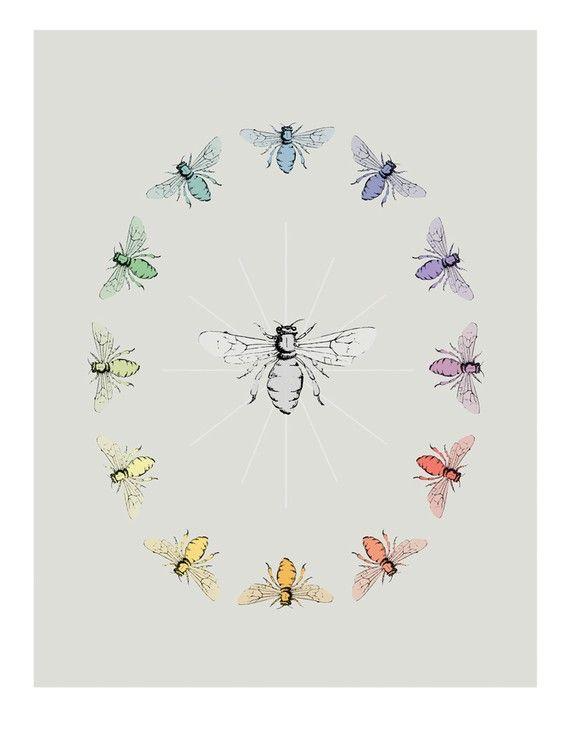 bee color wheel