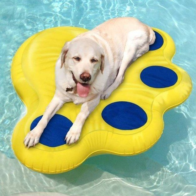 Dogs don't want to be left out when it comes to pool time: this raft is puncture proof so their claws won't cause it to capsize.