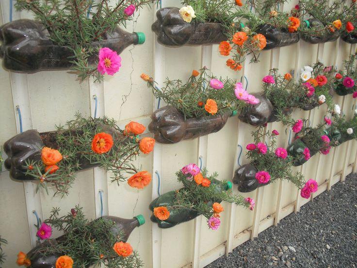 Chic é reutilizar: jardim vertical com garrafas pet