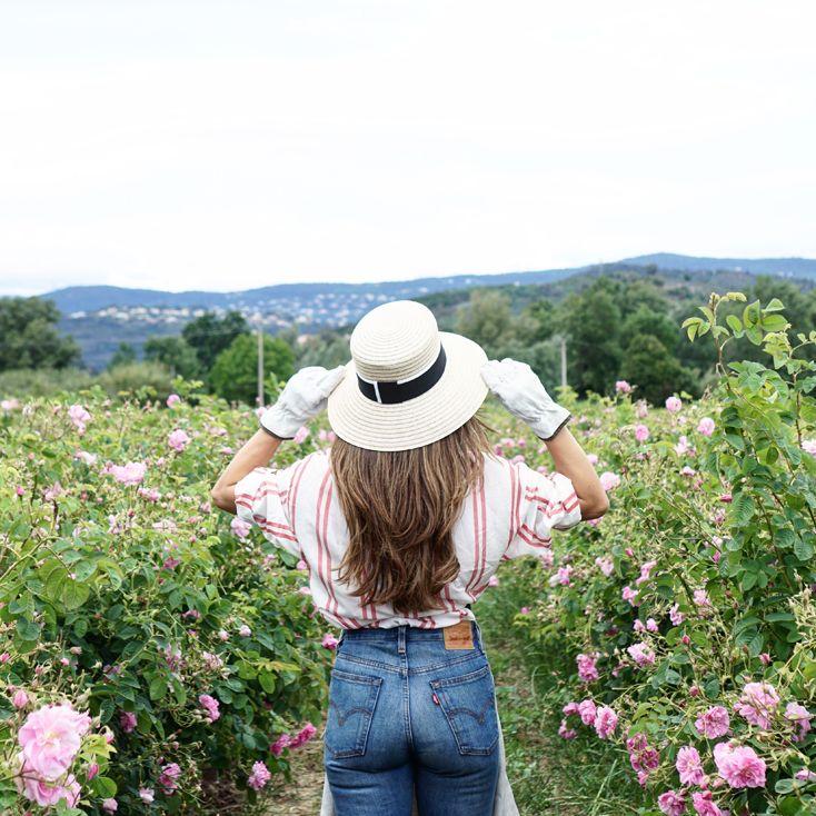 La semana pasada viajéa la Provenza francesa alos Campos de Chanel, en Pégomas, en la región de Grasse. Una experiencia única para vivir una inmersión total un día entero en los camposy en la masía quepertenece a la familia Mul desde 1878.Ahí descubrimos lanueva versión del perfume Nº5. Una nueva interpretación de un mito para las nuevas generaciones:Chanel Nº5 L'Eau, en la cuna del perfume. Uno de los viajes más increíbles que he vivido hasta hoy y que aun me tiene flotando en una…