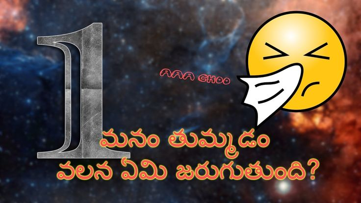 Sneezing Facts | మనం తుమ్మడం వలన ఏమి జరుగుతుంది? | Facts in Telugu 1st V...