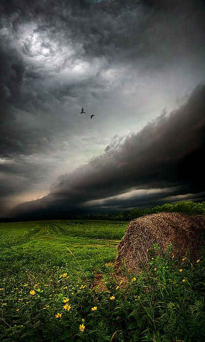 """Only Time:  From the Horizon series by Phil Koch, a two year photographic journey through the landscapes of Wisconsin."
