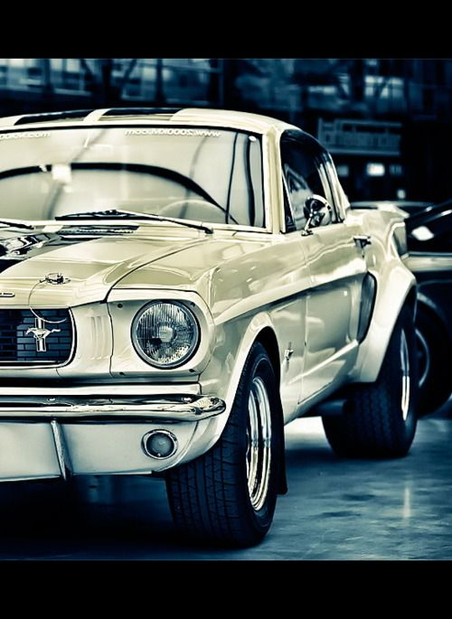 ... there's pretty much nothing I wouldn't do to own this...classic Mustang