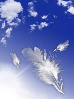 Angel signs <3