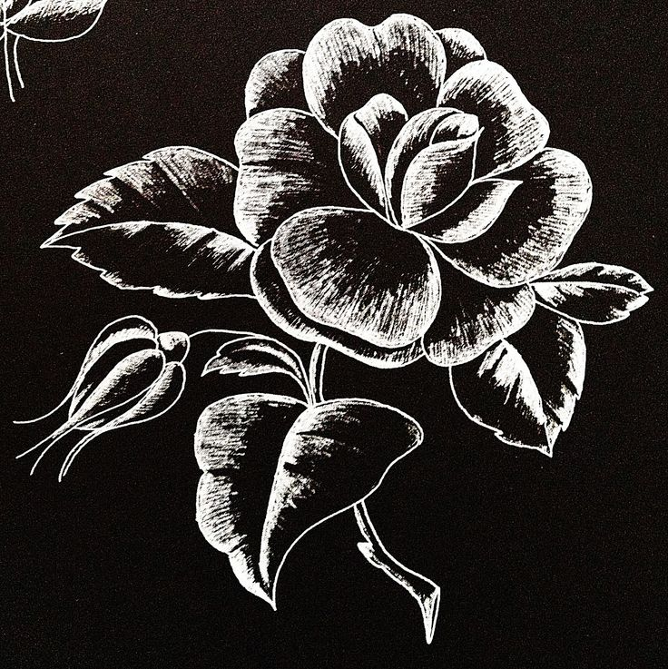 Katiesss  Glass etching or engraving pattern.