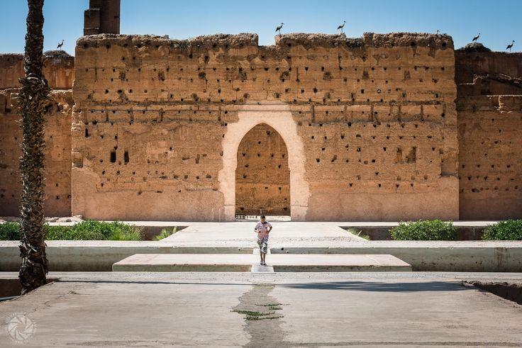 Storks at the El Badi Palace in Marrakesh