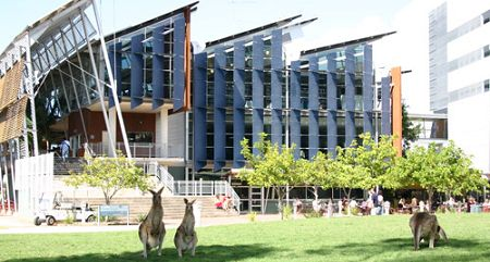 University of the Sunshine Coast (Australia) - It has kangaroos on it's front lawn!! #airnzsunshine