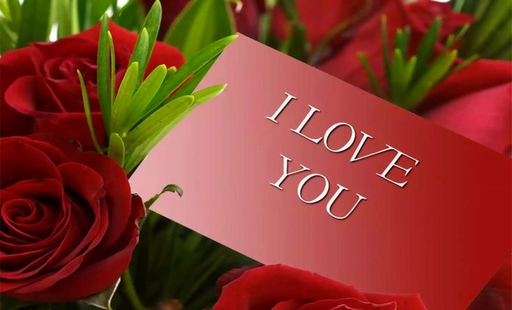 Happy Valentines Flowers. 9 best valentine heart shaped rose ...