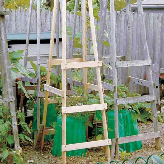 12-diy-tomato-cages