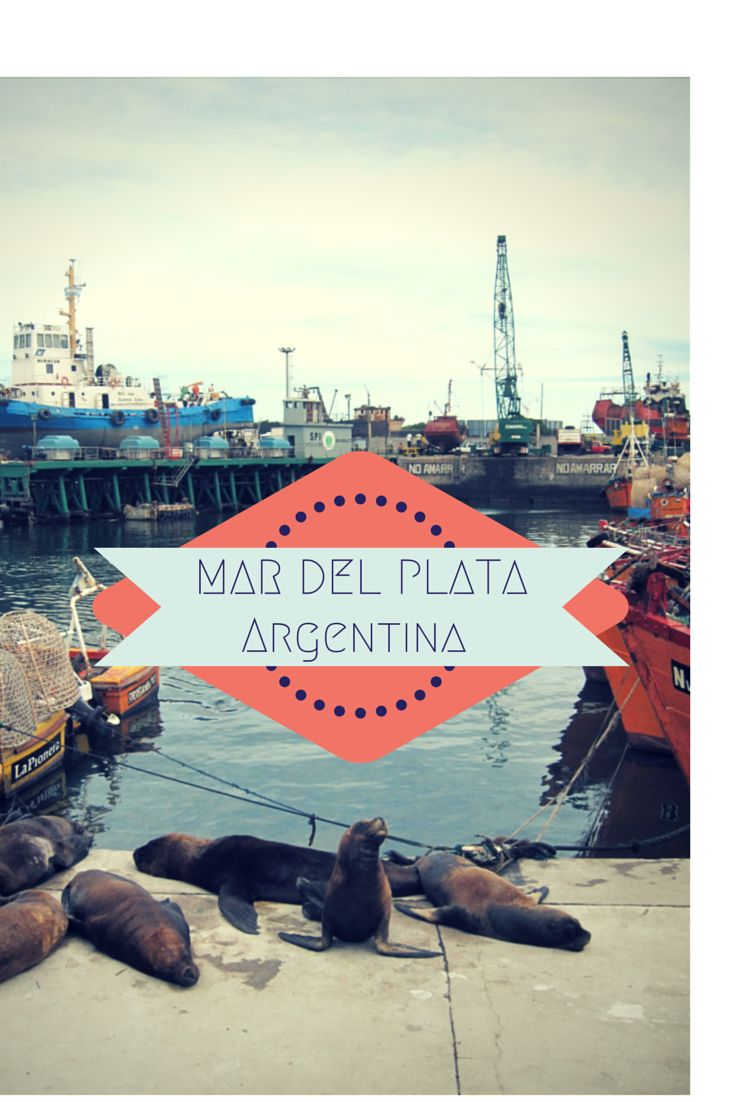 Mar del Plata is Argentina's biggest and most popular city by the beach. My family and I have vacationed there for over 30 years and counting.