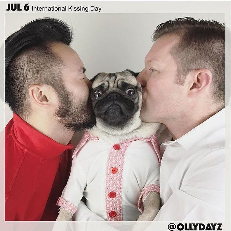@ollydayz is one of my favourite IG accounts. Olly and his dads create a unique holiday photo for every day of the year. This is my favourite for this year so far. Love Olly's face!  Want to be featured on our Instagram? Tag your photos with #thepugdiary for your chance to be featured.