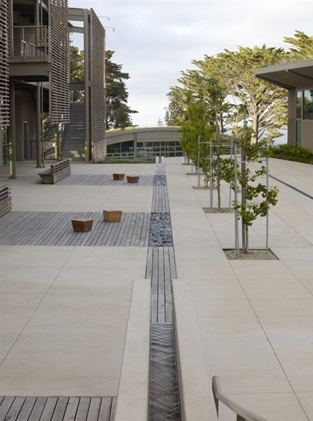 andrea cochran, nueva school  wood, stone pavers and runnel meet seamlesly