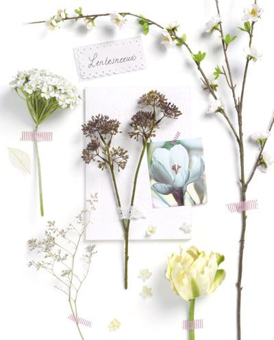 MOOD BOARD :: create a mood board with a spring blossom, fake and real flowers, a photo, small label, beautiful tape and a lace ribbon.