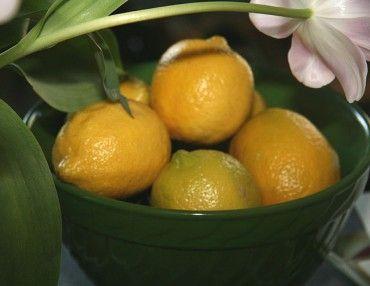 Comment perdre 10 kilos rapidement grâce au régime citron